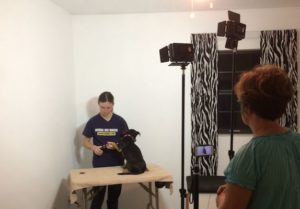 diane shooting a dog grooming video